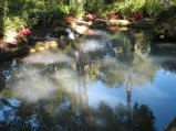 George Washington Park in Flagler Beach, FL 6